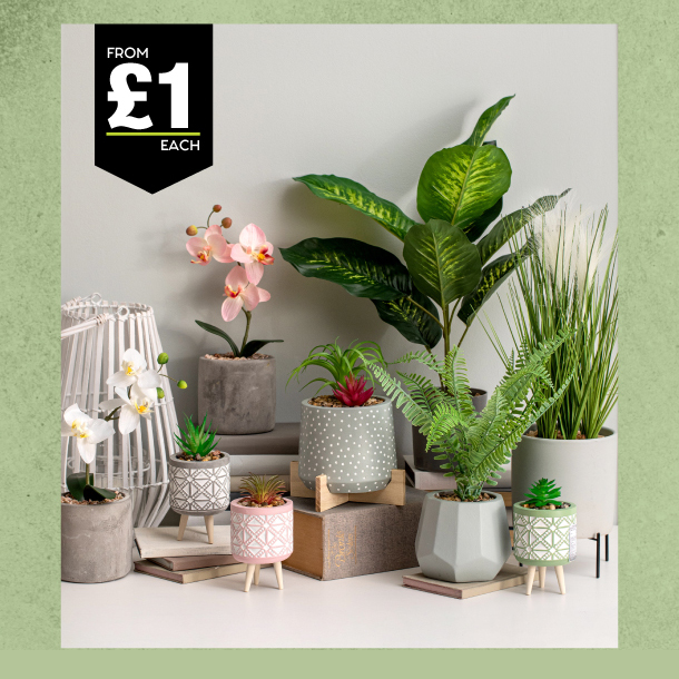 Home style is at Poundland